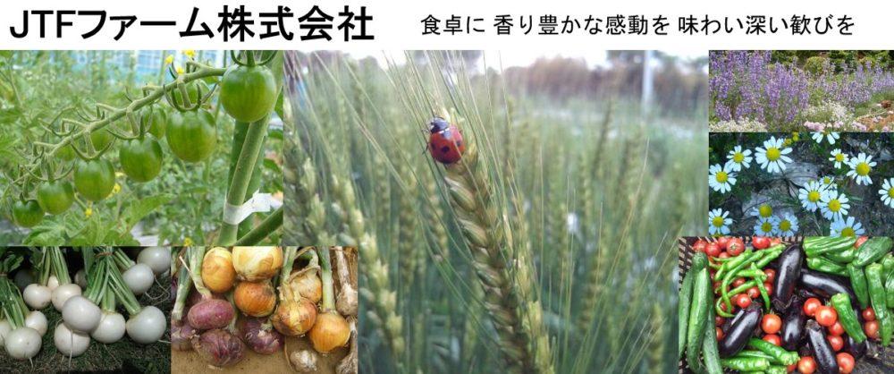 JTFファーム株式会社 (古川原農園)公式HP、日本と日本の農業を想うブログ